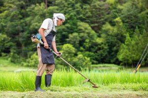 草刈り代行サービス